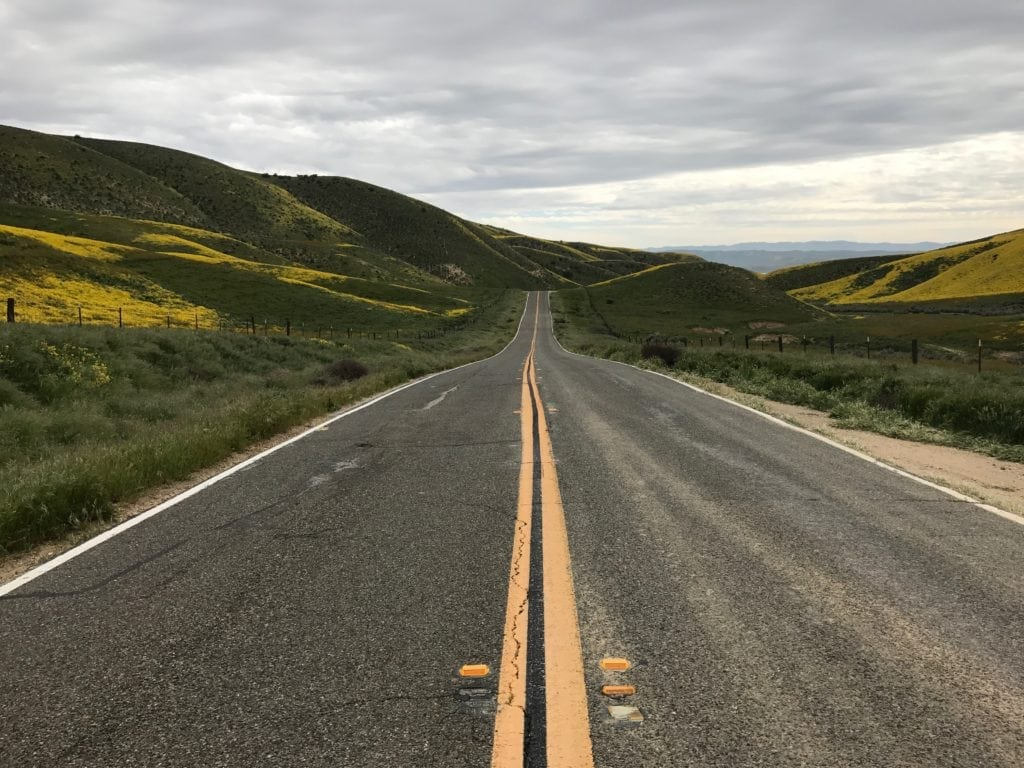 Carrizo Plain road in Spring surrounded by wildflowers.